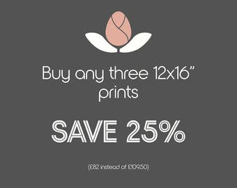 Fine art photography multi-buy discount *Buy three 12x16 inch prints save 25%* New-home luxury gifts 2018 Anniversary gift Birthday-gift
