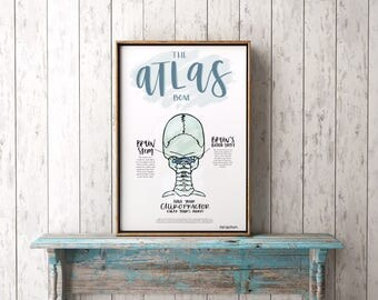 Atlas Chiropractic Poster *UPDATED | Subluxation | Symptoms | Spine | ANS | Spinal Column | Chiropractor | Hand Lettered | Vertebra |