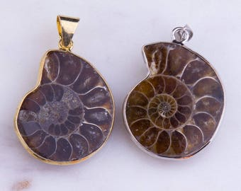 Ammonite Fossil Pendant, Iridescent, Fossil Jewelry, Ammonite Jewelry, Necklace Pendant, Handmade, Nature Inspired, Priced per Piece, PD018