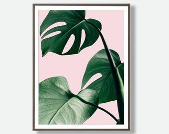 Monstera, Monstera Wall art, Digital Blush Pink Posters, Tropical Download, Blush Pink Background, Printable Large Poster, Feliss-Art