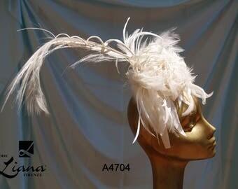 hair plumage