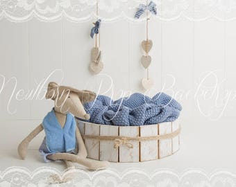 Newborn Digital Backdrop (bowl/blue/mouse)