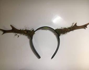 Moss///Real Deer Antler Flower Crown/Headband