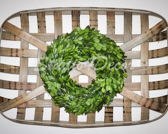 """12"""" Preserved Boxwood Wreath-Ships Now"""