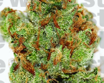 HD Weed Portrait - Sour Apple Haze