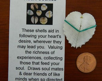 Whispers from the Sea Magic Magick Heart Cockles Follow Heart's Desire Draw Soul Mates & Friends