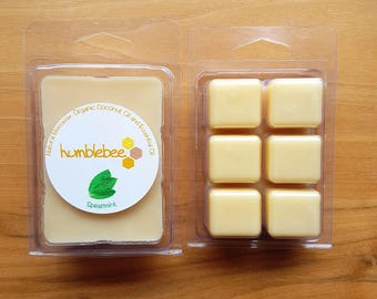 Beeswax melt - 2.5 oz - Scented {Spearmint}