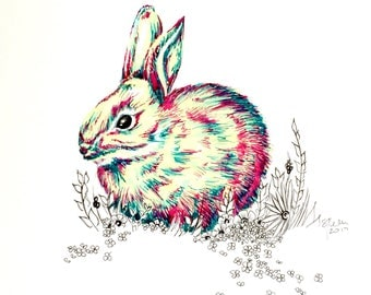 Original Pen &  Ink Illustration - Bunny Love