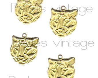 5 pendants / charms Tiger gold raw brass