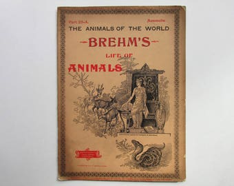 Antique 1896 Brehm's Life of Animals, Part 23-A, Illustrated, 1890's Booklet, Marquis & Company, The Rodents or Gnawing Animals, July 1896