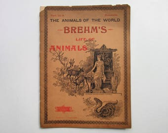 Antique 1896 Brehm's Life of Animals, Part 29-A, Illustrated, 1890's Booklet, Marquis & Company, The Cloven-Hoofed Animals: Goats, Sheep