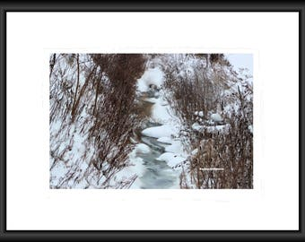 Deeply Frozen, Photography, Free Shipping, Wall Art, Home Decor, Print, Framed Print, Canvas Wrap, Canvas with Floating Frame, Nature Pic