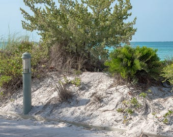 Florida Beach Digital Background