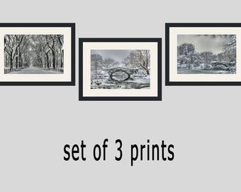 Central Park Winter Print Photo Set Wall Decor