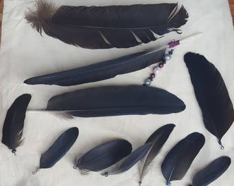 Amazing Jet Black Feather Charms/Pendants (LOT)