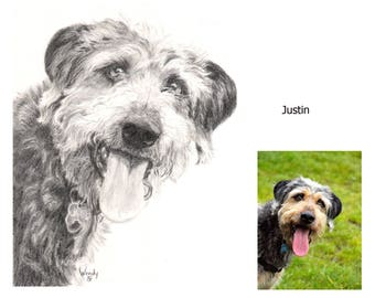 Custom Pet Portrait/Drawing of you Best Friend/ Cat, Dog, Horse, Personalized Art from Photo - SAMPLE