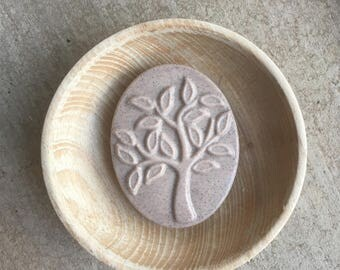 Apple Cinnamon Soap with Oatmeal