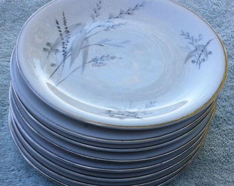 Edelstein Fairfield 20429 bread and butter plates (8)