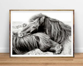 Horse Print, Horse Photography Wall Photo, Black and White Horse Printable Poster, Digital Print Download, Horse Wall Art, Equestrian Photo