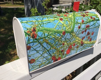 One of Kind Magnetic Mailbox Covers