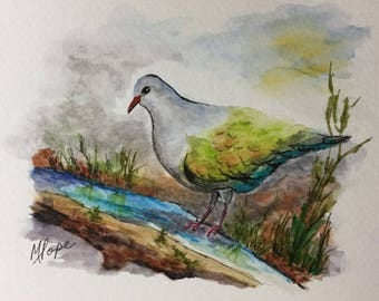 The Pigeon/Watercolor and Ink/Pigeon watercolor/bird art/pigeon art/Home decor/bird painting/bird painting/wildlife