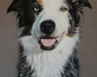 Custom Pet Portraits. Pets, Wildlife and People.Dog Art. Gift.Christmas Birthday. Dogs,Cats,Horses,etc. Realistic Portrait from a Photograph