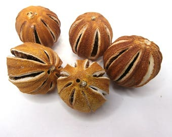 5 PCS Pre-Drilled Dried whole oranges, Dried orange slices, Christmas orange ornaments, Potpourri