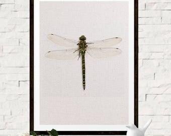 Dragonfly art   Etsy