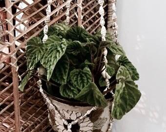 Shell planter | Suspended planter | Vintage planter