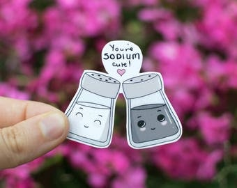 "Salt & Pepper Pun Sticker - ""You are SODIUM cute!"" - waterproof and removable"