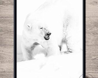 Unframed poster - Polarbear