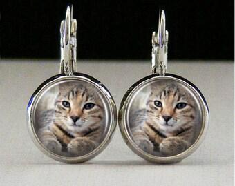 Cat Glass bezel earrings cat earrings cat jewelry cat lover gift custom photo earrings photo jewelry glass jewelry