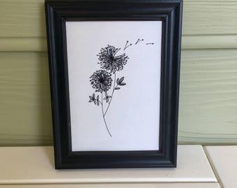 Pen & Ink Dandelion