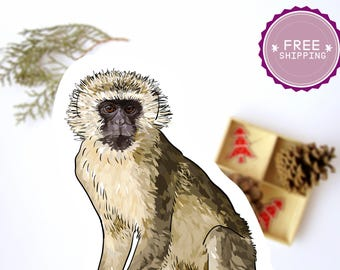 Vervet Monkey Sticker -Animal stickers,Back to school,Monkey decal,Vervet Artwork,Kids planner sticker,Preschool art,Animal lover gift