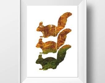 Squirrel Print - Woodland Home Decor - Scandinavian Print - Squirrel Art - Squirrel Wall Art - Squirrel Gift - Rustic Decor - Scandi Decor