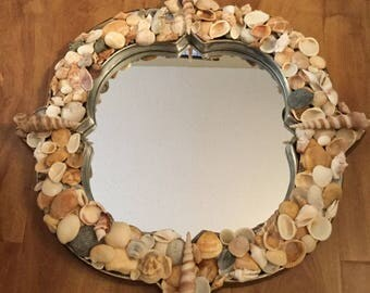 "Sea Shell Mirror 17"" x 17"""