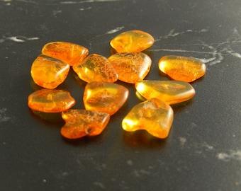 Chips of amber 10 genuine ref 765