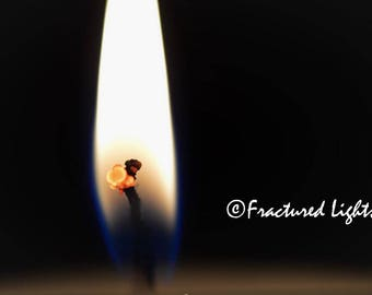 Budding Flame Photo Download