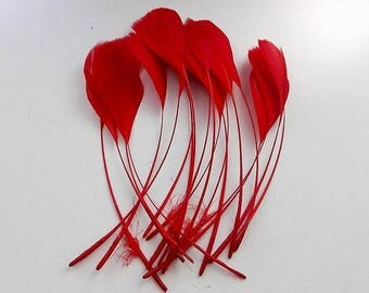 set of 10 feathers red 15cm