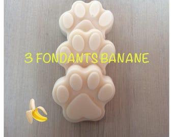 Wax melters, banana, cat paw shape