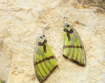 Earrings butterfly wings. Natural gem.