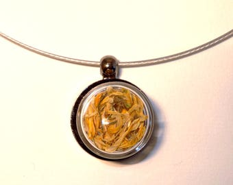 The Choker necklace with small glass yellow dobsonfly puck