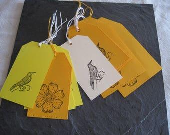 Cards, spring, nature, bird, flower