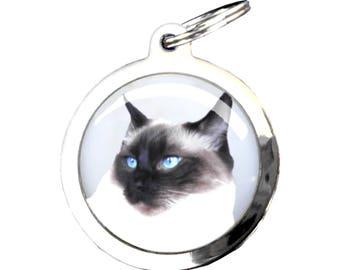 Dog Medal RAGDOLL cat - chrome