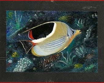 """""""exotic fish ' oil on Slate from Italy. Slate"""