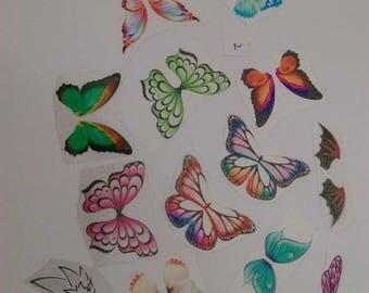 Set of 15 wings Mix NON cutting set no. 2