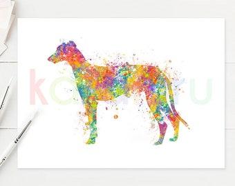 Greyhound Watercolor Art - Greyhound Watercolor Print - Greyhound Watercolor Poster - Greyhound Wall Art - Dog Watercolor - A60
