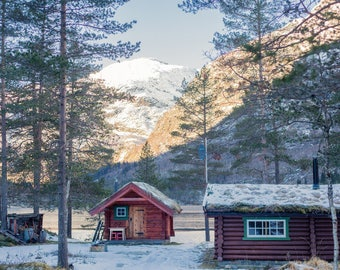 Norwegian Wood Cabins Photo Print (Various Sizes)