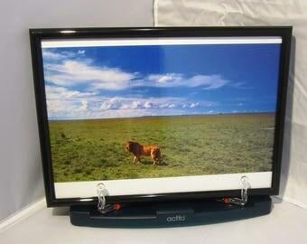 Ken Duncan photograph print Serengeti, Tanzania - framed