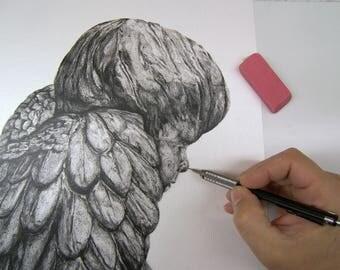 Angel Wings - Pencil Drawing, Canvas Print, Paper Print